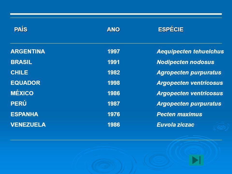 ARGENTINA BRASIL CHILE EQUADOR MÉXICO PERÚ ESPANHA VENEZUELA 1997 1991 1982 1998 1986 1987 1976 1986 Aequipecten tehuelchus Nodipecten nodosus Agropec