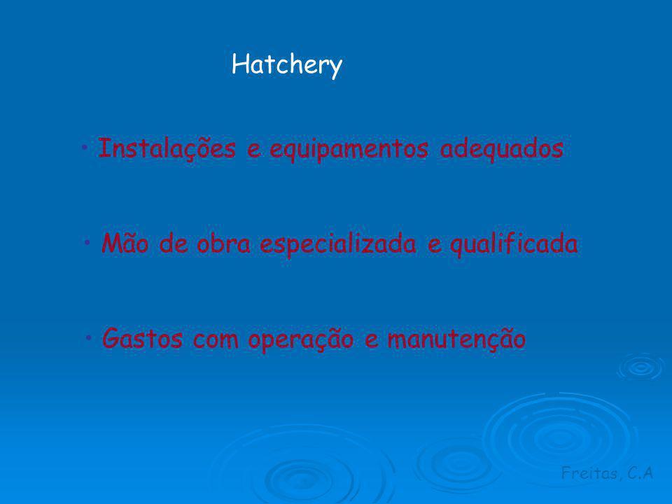 Hatchery Instalações e equipamentos adequados Mão de obra especializada e qualificada Gastos com operação e manutenção Freitas, C.A