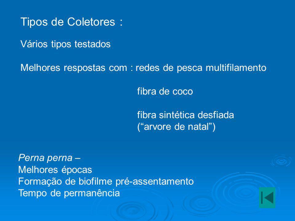 """Tipos de Coletores : Vários tipos testados Melhores respostas com : redes de pesca multifilamento fibra de coco fibra sintética desfiada (""""arvore de n"""