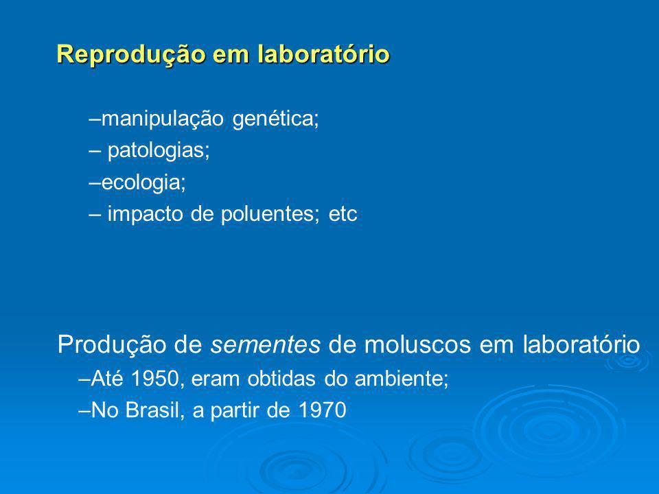 Reprodução em laboratório –manipulação genética; – patologias; –ecologia; – impacto de poluentes; etc Produção de sementes de moluscos em laboratório