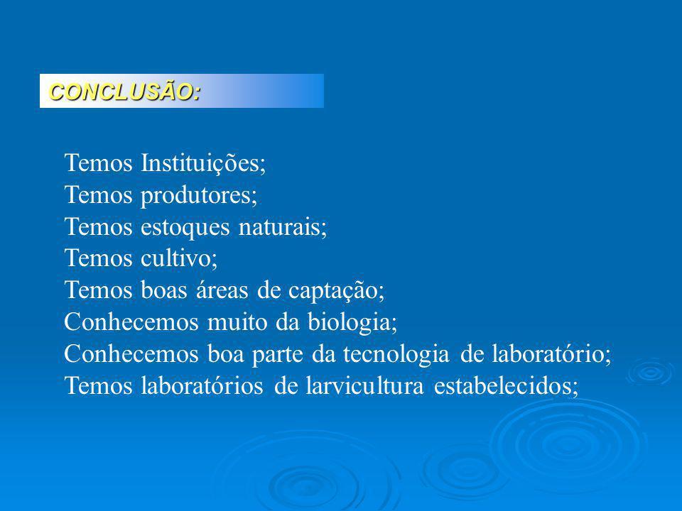 CONCLUSÃO: Temos Instituições; Temos produtores; Temos estoques naturais; Temos cultivo; Temos boas áreas de captação; Conhecemos muito da biologia; C