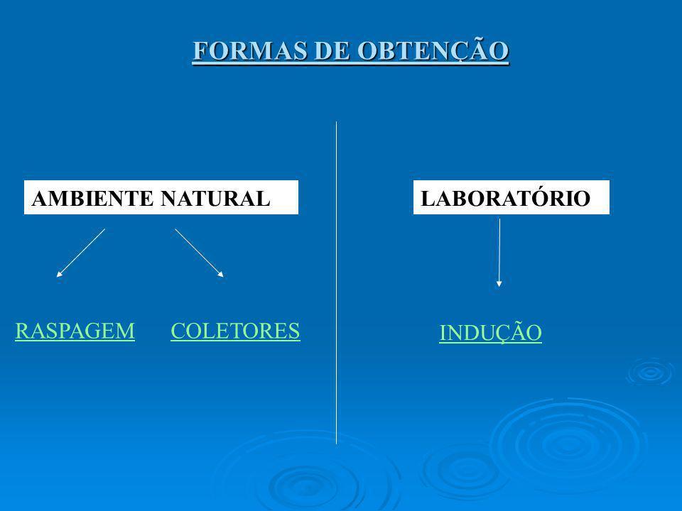 FORMAS DE OBTENÇÃO AMBIENTE NATURALLABORATÓRIO RASPAGEMCOLETORES INDUÇÃO