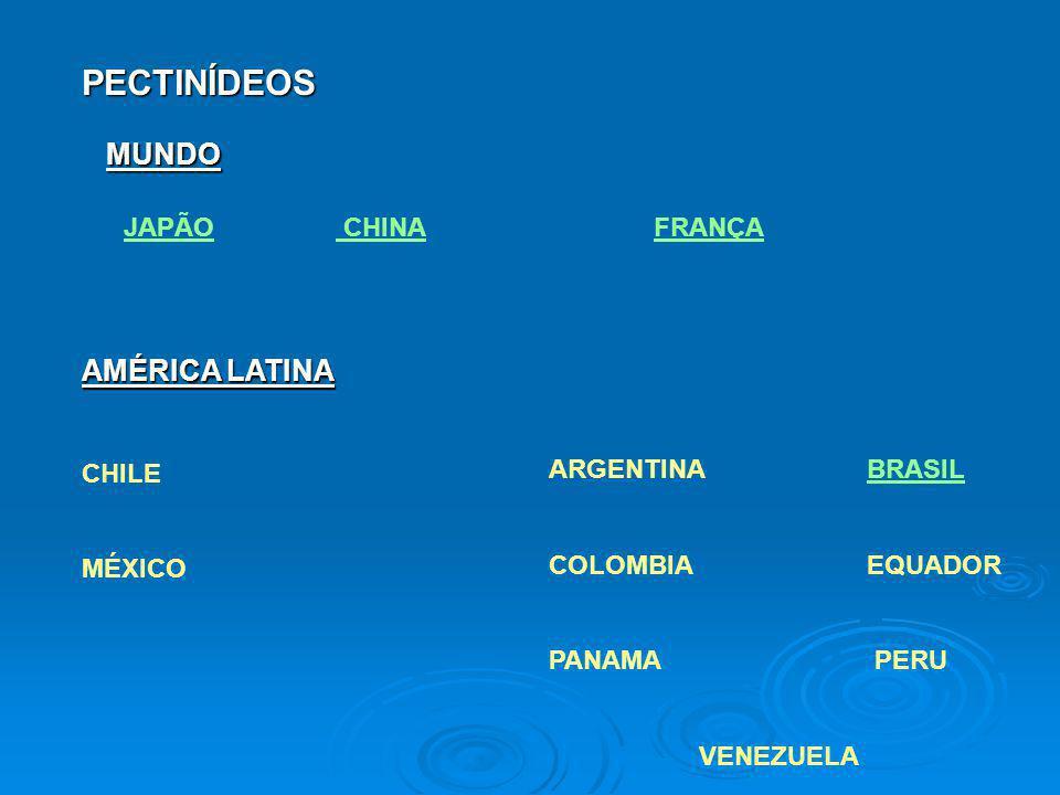 PECTINÍDEOS JAPÃO CHINAFRANÇA AMÉRICA LATINA CHILE MÉXICO ARGENTINA BRASILBRASIL COLOMBIA EQUADOR PANAMA PERU VENEZUELA MUNDO