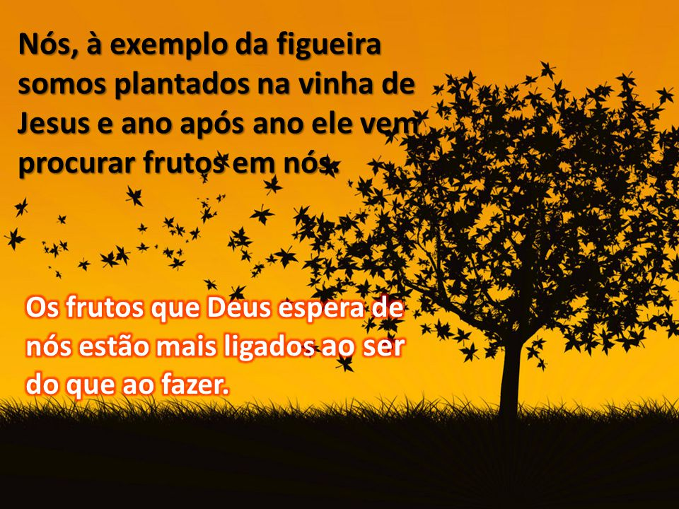 Nós, à exemplo da figueira somos plantados na vinha de Jesus e ano após ano ele vem procurar frutos em nós.