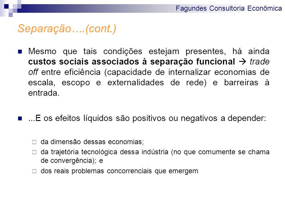 Fagundes Consultoria Econômica Separação….(cont.) Mesmo que tais condições estejam presentes, há ainda custos sociais associados à separação funcional