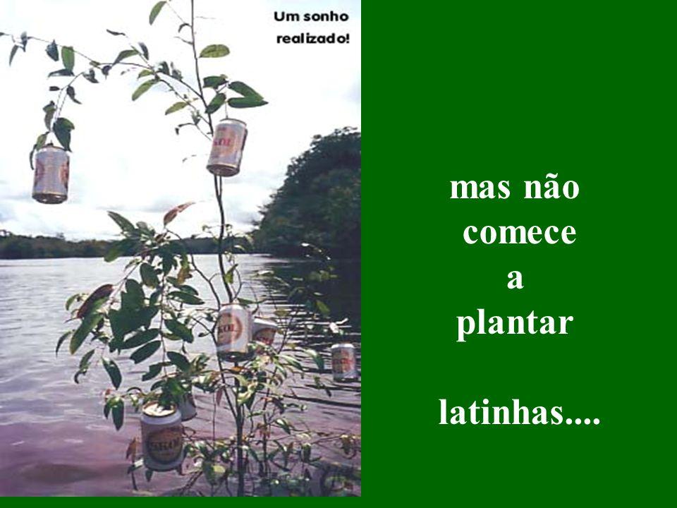 mas não comece a plantar latinhas....