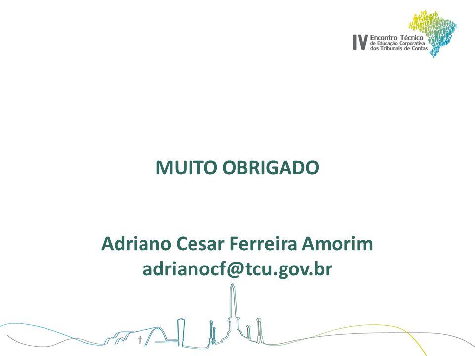 MUITO OBRIGADO Adriano Cesar Ferreira Amorim adrianocf@tcu.gov.br