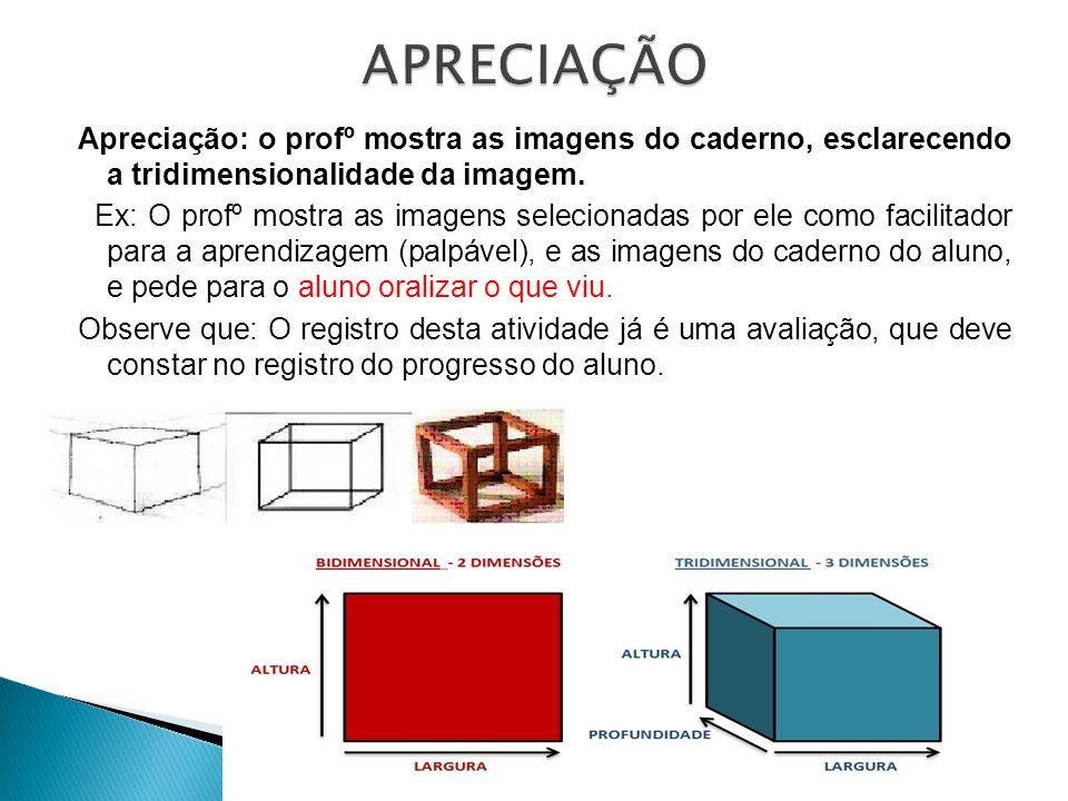 Apreciação: o profº mostra as imagens do caderno, esclarecendo a tridimensionalidade da imagem.