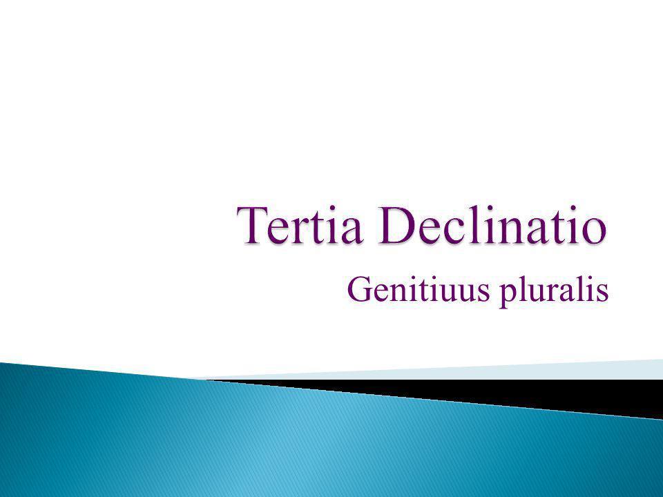 Genitiuus pluralis