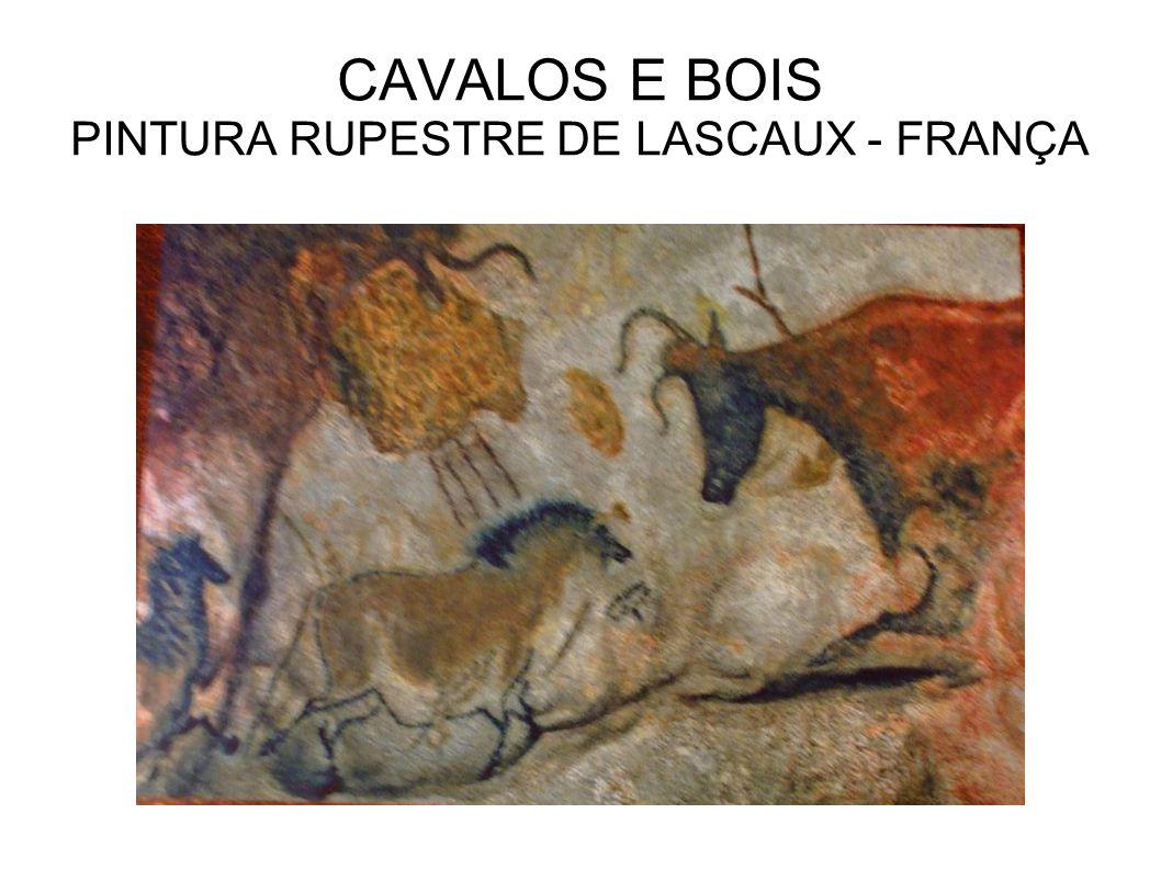 CAVALOS E BOIS PINTURA RUPESTRE DE LASCAUX - FRANÇA