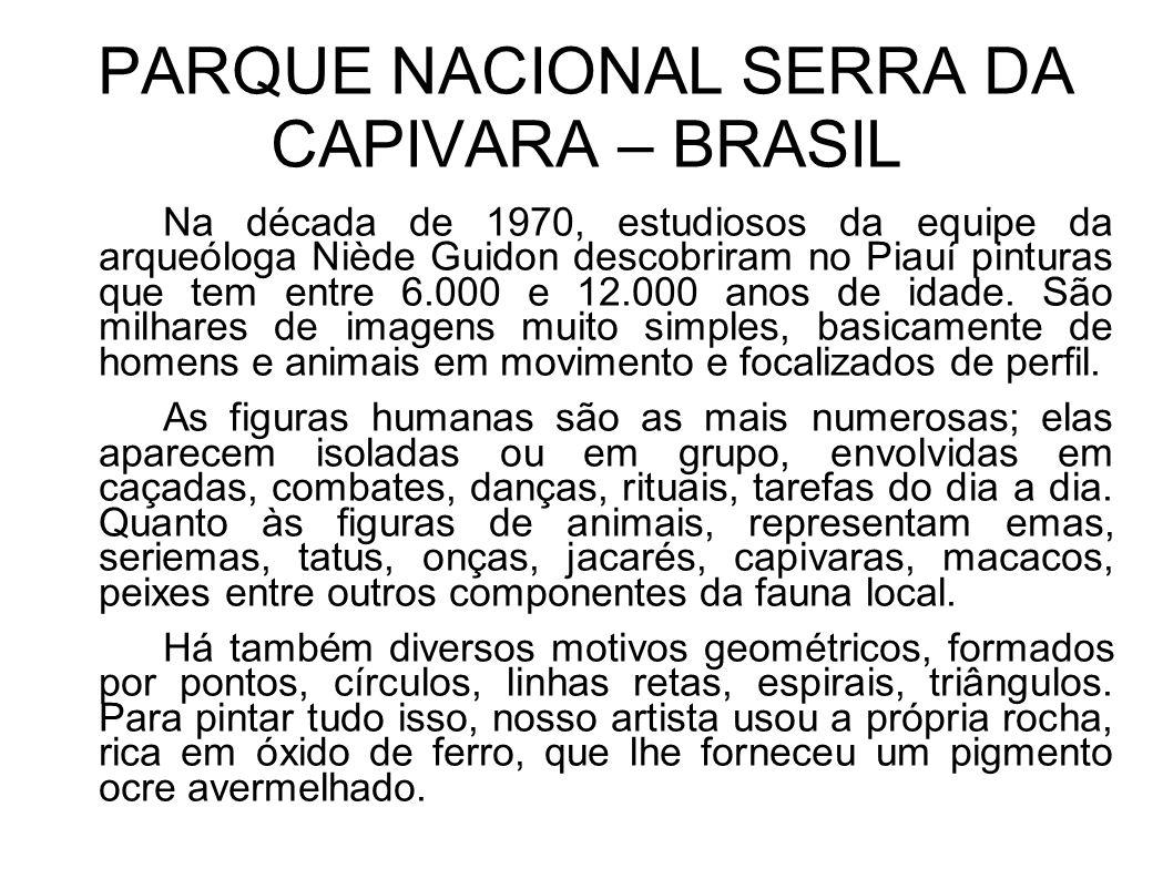PARQUE NACIONAL SERRA DA CAPIVARA – BRASIL Na década de 1970, estudiosos da equipe da arqueóloga Niède Guidon descobriram no Piauí pinturas que tem en