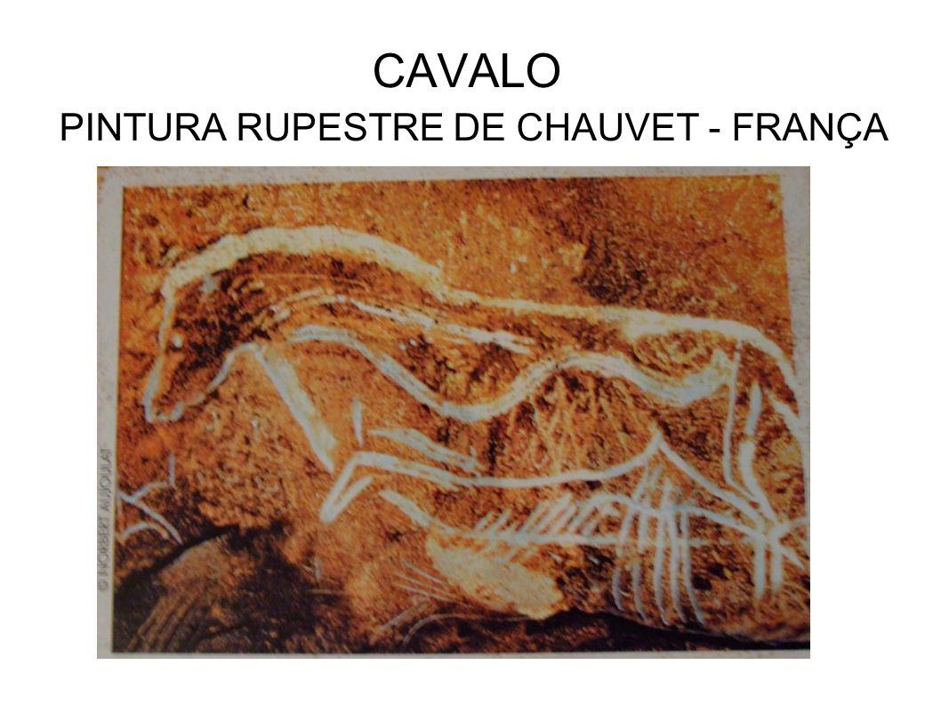 CAVALO PINTURA RUPESTRE DE CHAUVET - FRANÇA