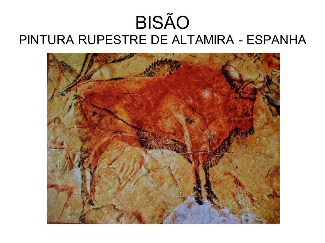 BISÃO PINTURA RUPESTRE DE ALTAMIRA - ESPANHA