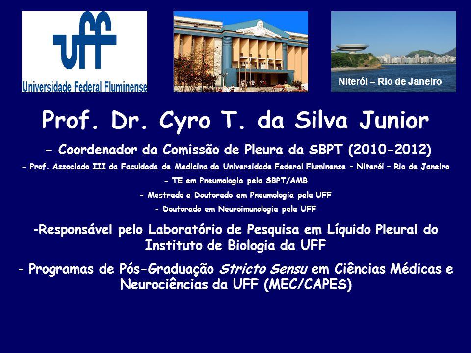 Prof. Dr. Cyro T. da Silva Junior - Coordenador da Comissão de Pleura da SBPT (2010-2012) - Prof. Associado III da Faculdade de Medicina da Universida