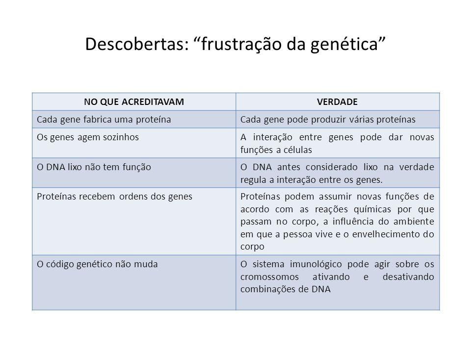 """Descobertas: """"frustração da genética"""" NO QUE ACREDITAVAMVERDADE Cada gene fabrica uma proteínaCada gene pode produzir várias proteínas Os genes agem s"""
