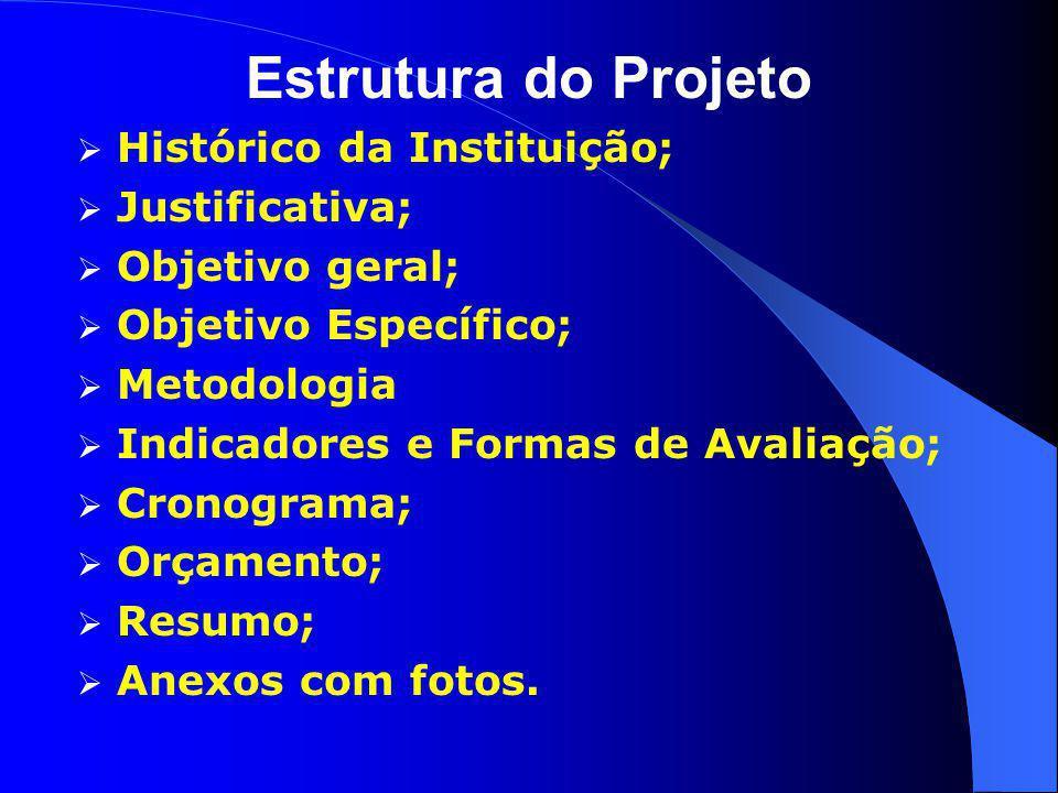 Estrutura do Projeto  Histórico da Instituição;  Justificativa;  Objetivo geral;  Objetivo Específico;  Metodologia  Indicadores e Formas de Ava