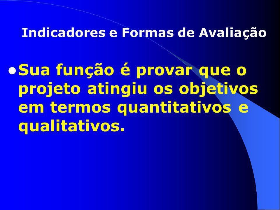Sua função é provar que o projeto atingiu os objetivos em termos quantitativos e qualitativos. Indicadores e Formas de Avaliação