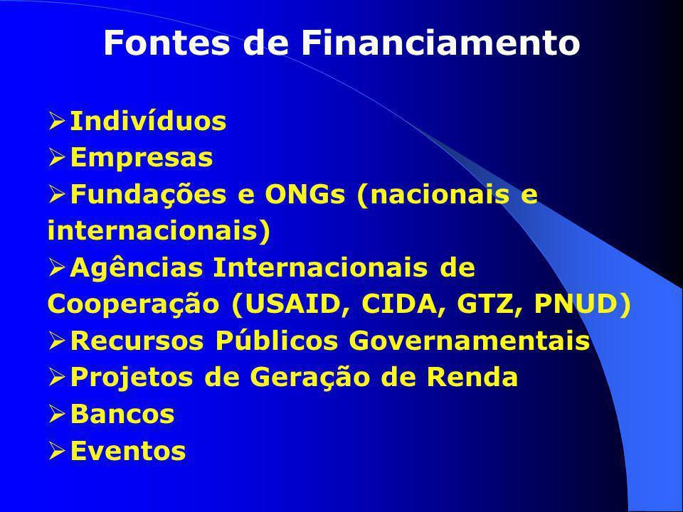 Fontes de Financiamento  Indivíduos  Empresas  Fundações e ONGs (nacionais e internacionais)  Agências Internacionais de Cooperação (USAID, CIDA,