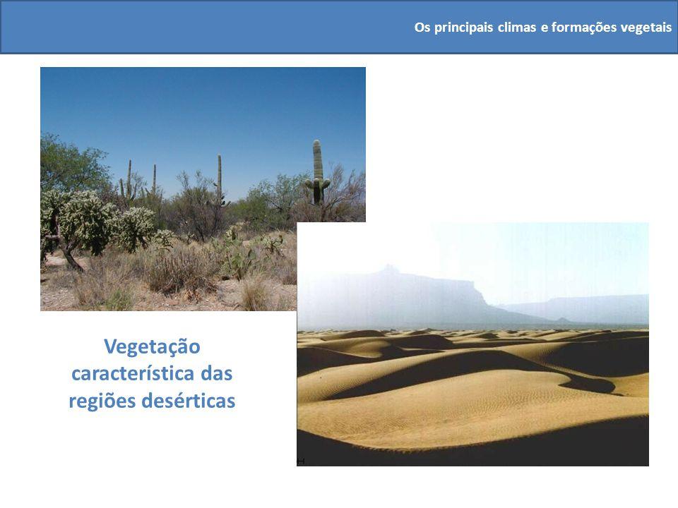 Vegetação característica das regiões desérticas Os principais climas e formações vegetais