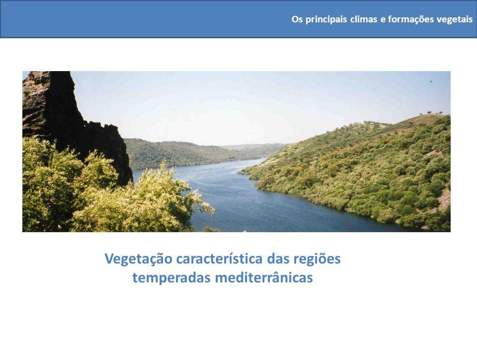 Vegetação característica das regiões temperadas mediterrânicas Os principais climas e formações vegetais