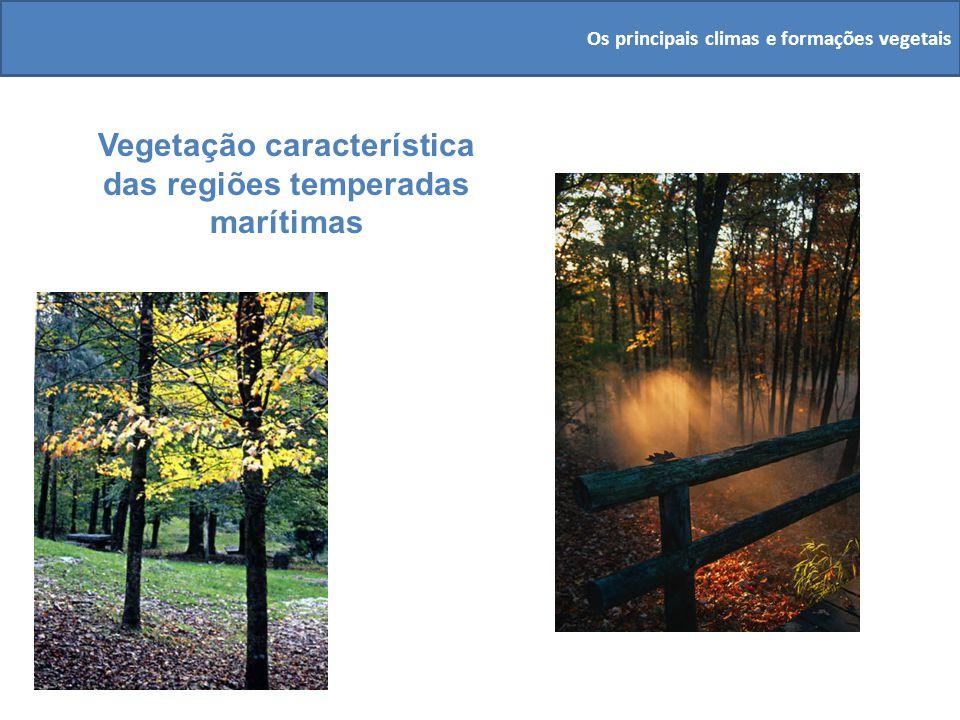 Vegetação característica das regiões temperadas marítimas Os principais climas e formações vegetais