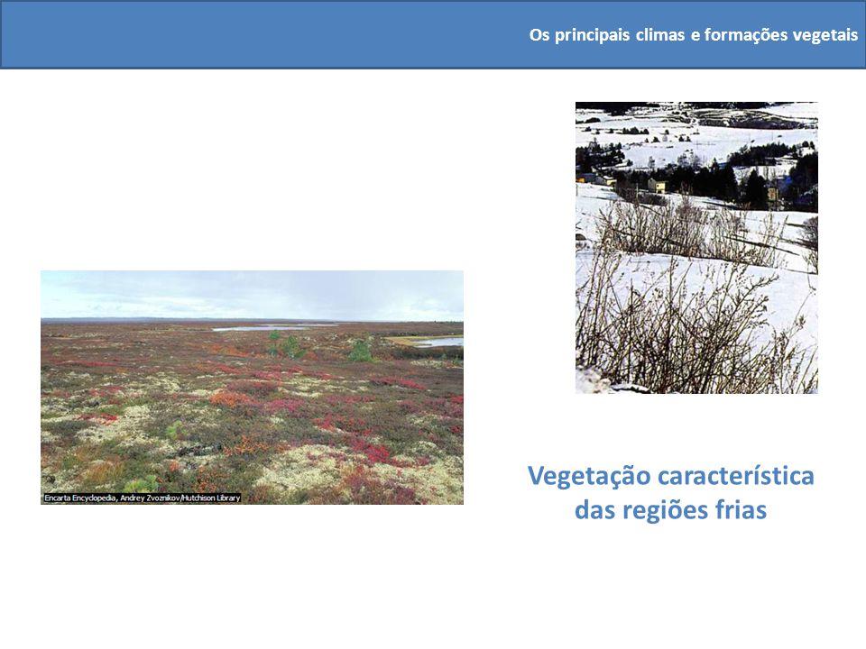 Vegetação característica das regiões frias Os principais climas e formações vegetais