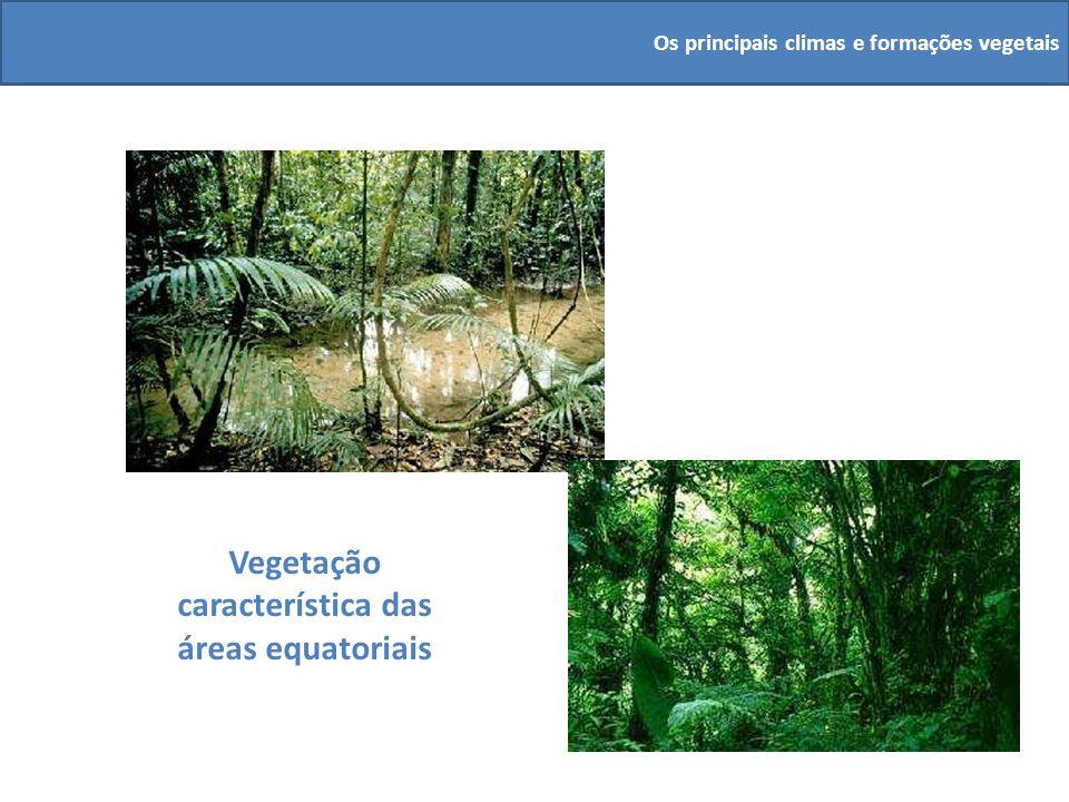 Vegetação característica das áreas equatoriais Os principais climas e formações vegetais