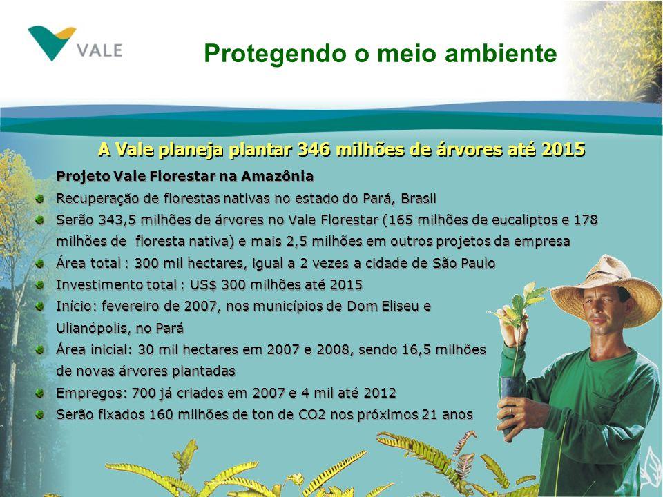 Projeto Vale Florestar na Amazônia Recuperação de florestas nativas no estado do Pará, Brasil Serão 343,5 milhões de árvores no Vale Florestar (165 milhões de eucaliptos e 178 milhões de floresta nativa) e mais 2,5 milhões em outros projetos da empresa Área total : 300 mil hectares, igual a 2 vezes a cidade de São Paulo Investimento total : US$ 300 milhões até 2015 Início: fevereiro de 2007, nos municípios de Dom Eliseu e Ulianópolis, no Pará Área inicial: 30 mil hectares em 2007 e 2008, sendo 16,5 milhões de novas árvores plantadas Empregos: 700 já criados em 2007 e 4 mil até 2012 Serão fixados 160 milhões de ton de CO2 nos próximos 21 anos Protegendo o meio ambiente A Vale planeja plantar 346 milhões de árvores até 2015