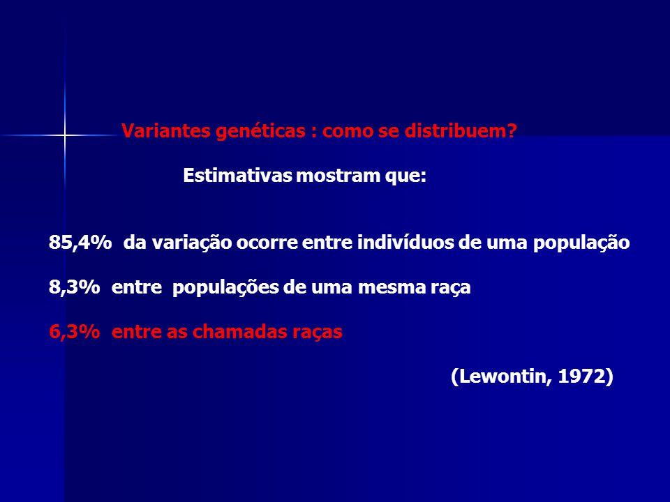 Variantes genéticas : como se distribuem? Estimativas mostram que: 85,4% da variação ocorre entre indivíduos de uma população 8,3% entre populações de