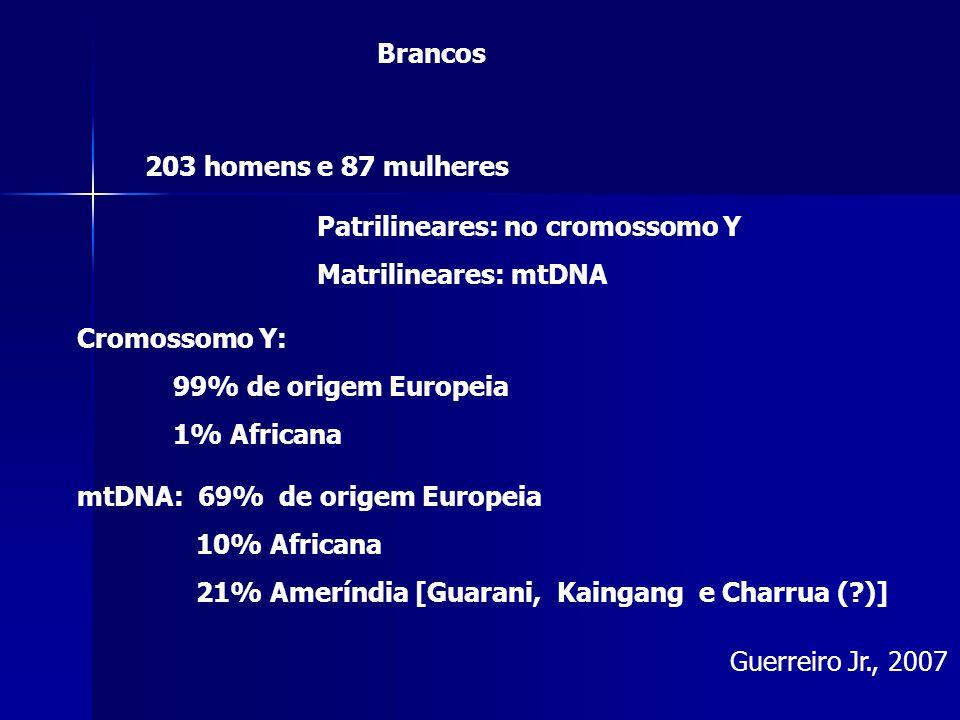 Guerreiro Jr., 2007 203 homens e 87 mulheres Patrilineares: no cromossomo Y Matrilineares: mtDNA Cromossomo Y: 99% de origem Europeia 1% Africana mtDNA: 69% de origem Europeia 10% Africana 21% Ameríndia [Guarani, Kaingang e Charrua ( )] Brancos