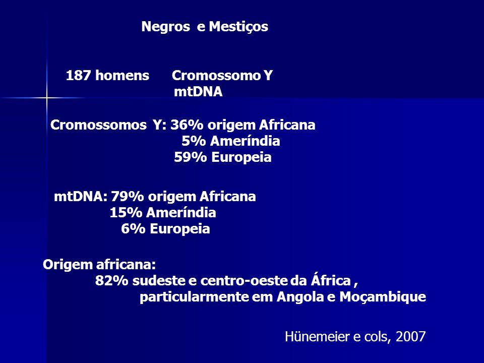 Hünemeier e cols, 2007 187 homens Cromossomo Y mtDNA Negros e Mestiços mtDNA: 79% origem Africana 15% Ameríndia 6% Europeia Cromossomos Y: 36% origem Africana 5% Ameríndia 59% Europeia Origem africana: 82% sudeste e centro-oeste da África, particularmente em Angola e Moçambique