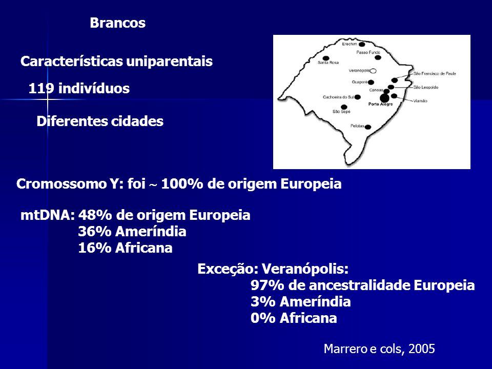 Marrero e cols, 2005 Características uniparentais 119 indivíduos Diferentes cidades Cromossomo Y: foi  100% de origem Europeia Exceção: Veranópolis: 97% de ancestralidade Europeia 3% Ameríndia 0% Africana mtDNA: 48% de origem Europeia 36% Ameríndia 16% Africana Brancos