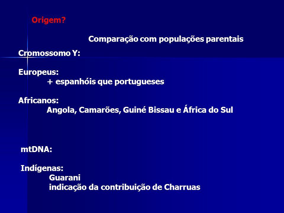 Cromossomo Y: Europeus: + espanhóis que portugueses Africanos: Angola, Camarões, Guiné Bissau e África do Sul mtDNA: Indígenas: Guarani indicação da c