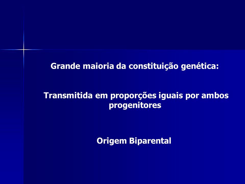 Grande maioria da constituição genética: Transmitida em proporções iguais por ambos progenitores Origem Biparental