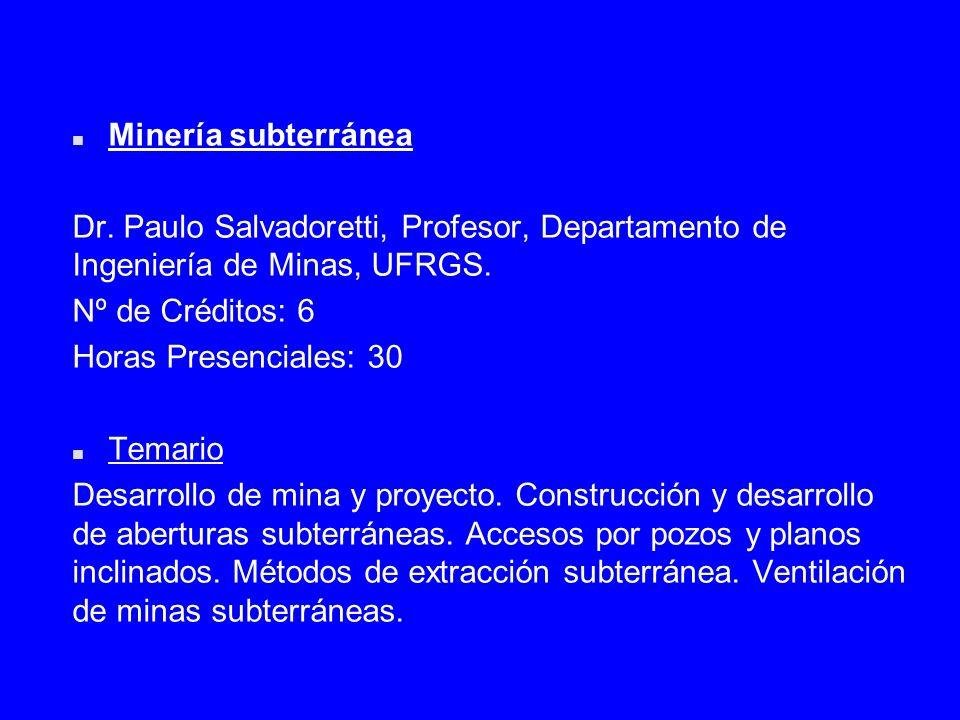 n Minería subterránea Dr. Paulo Salvadoretti, Profesor, Departamento de Ingeniería de Minas, UFRGS. Nº de Créditos: 6 Horas Presenciales: 30 n Temario