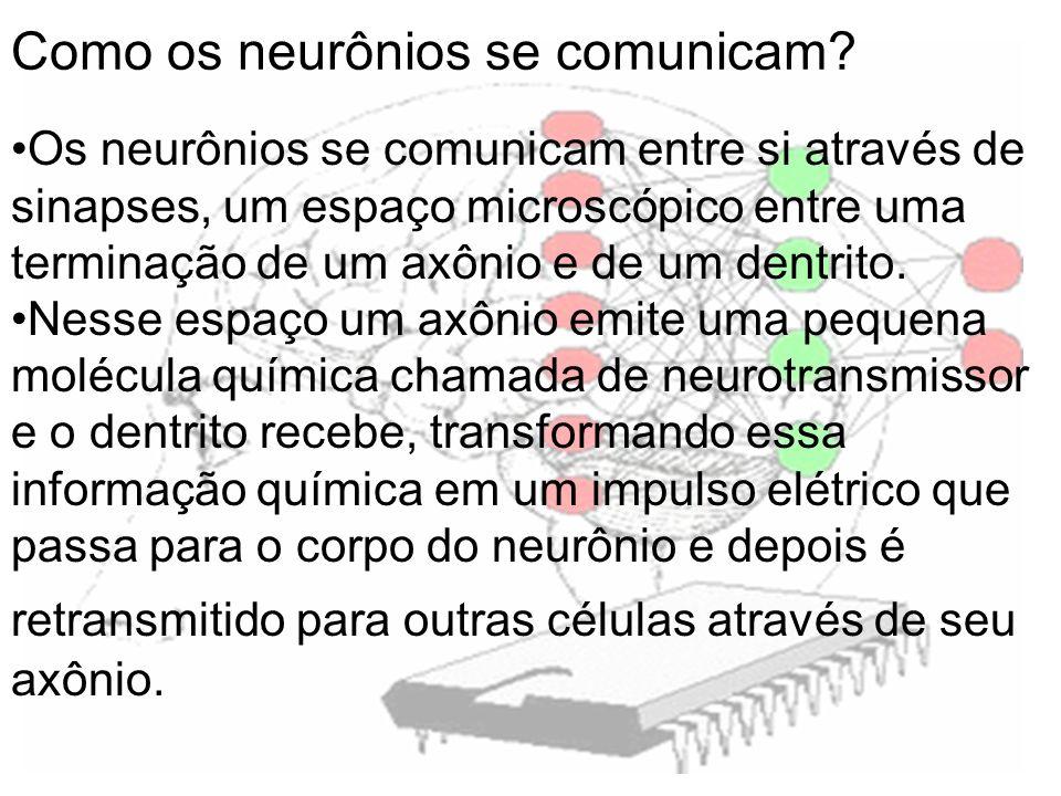 Como os neurônios se comunicam? Os neurônios se comunicam entre si através de sinapses, um espaço microscópico entre uma terminação de um axônio e de