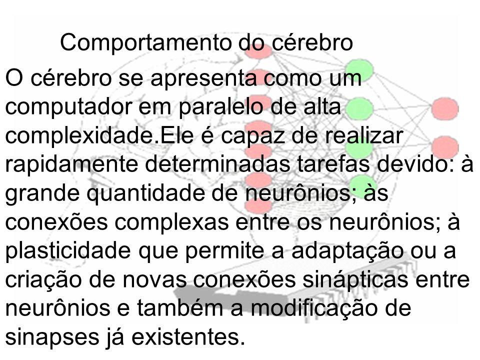 Comportamento do cérebro O cérebro se apresenta como um computador em paralelo de alta complexidade.Ele é capaz de realizar rapidamente determinadas t