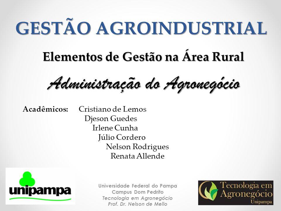GESTÃO AGROINDUSTRIAL Universidade Federal do Pampa Campus Dom Pedrito Tecnologia em Agronegócio Prof. Dr. Nelson de Mello 1 Administração do Agronegó