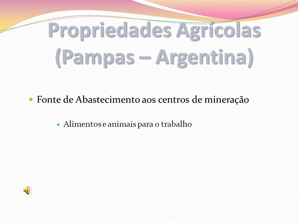 Propriedades Agrícolas (Pampas – Argentina) Fonte de Abastecimento aos centros de mineração Alimentos e animais para o trabalho
