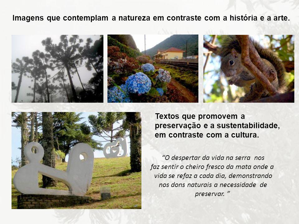 Imagens que contemplam a natureza em contraste com a história e a arte. Textos que promovem a preservação e a sustentabilidade, em contraste com a cul