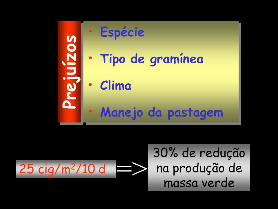 Espécie Tipo de gramínea Clima Manejo da pastagem Espécie Tipo de gramínea Clima Manejo da pastagem 25 cig/m 2 /10 d Prejuízos => 30% de redução na pr