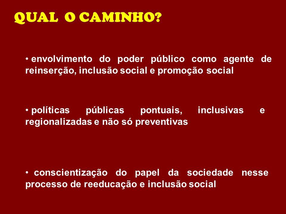QUAL O CAMINHO? envolvimento do poder público como agente de reinserção, inclusão social e promoção social conscientização do papel da sociedade nesse