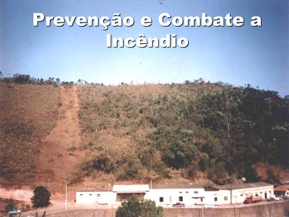 Projeto Plano de Manejo do Parque natural Municipal de São Lourenço