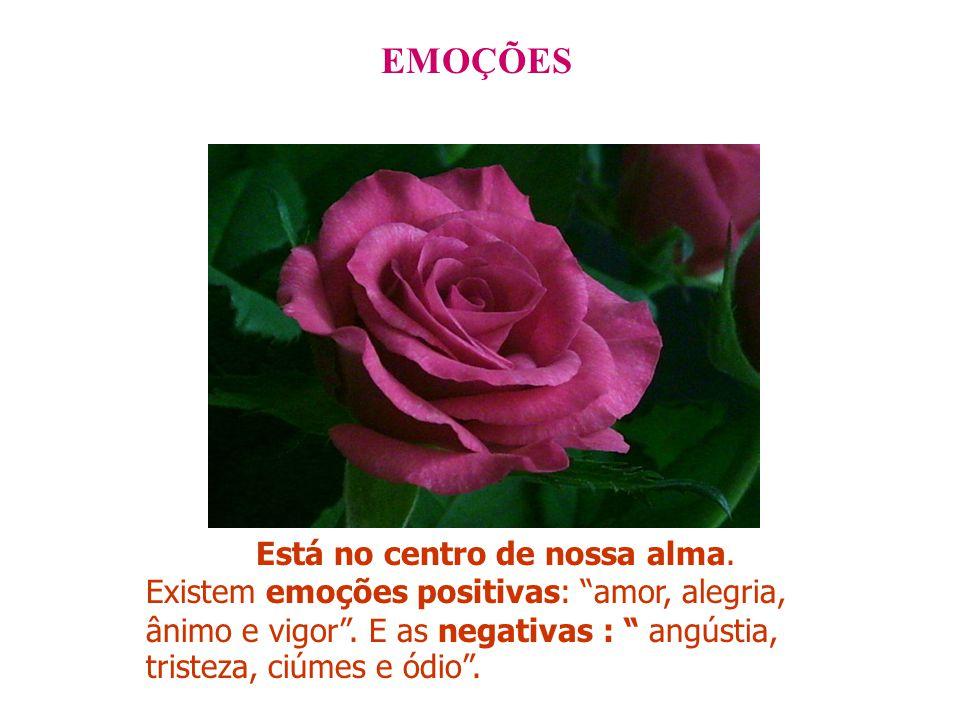 EMOÇÕES Está no centro de nossa alma.Existem emoções positivas: amor, alegria, ânimo e vigor .