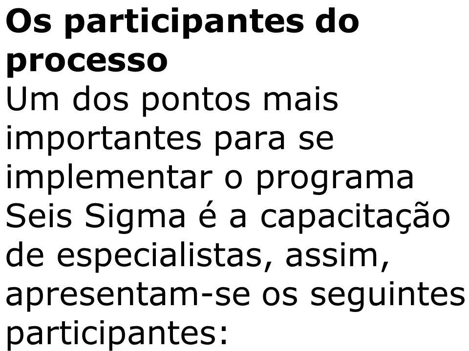 Os participantes do processo Um dos pontos mais importantes para se implementar o programa Seis Sigma é a capacitação de especialistas, assim, apresen