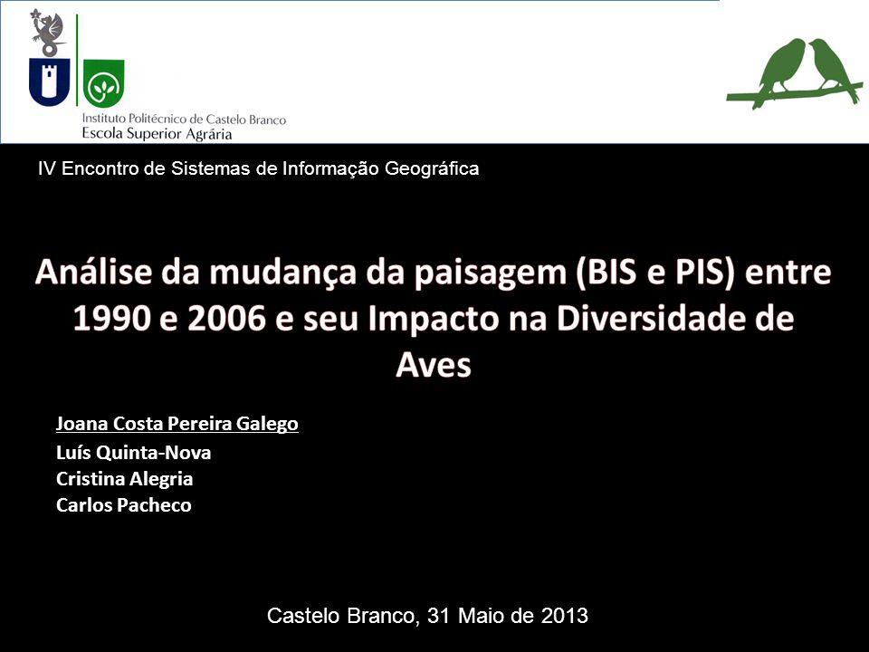 Análise da mudança da paisagem (BIS e PIS) entre 1990 e 2006 e seu Impacto na Diversidade de Aves Resultados Evolução da paisagem