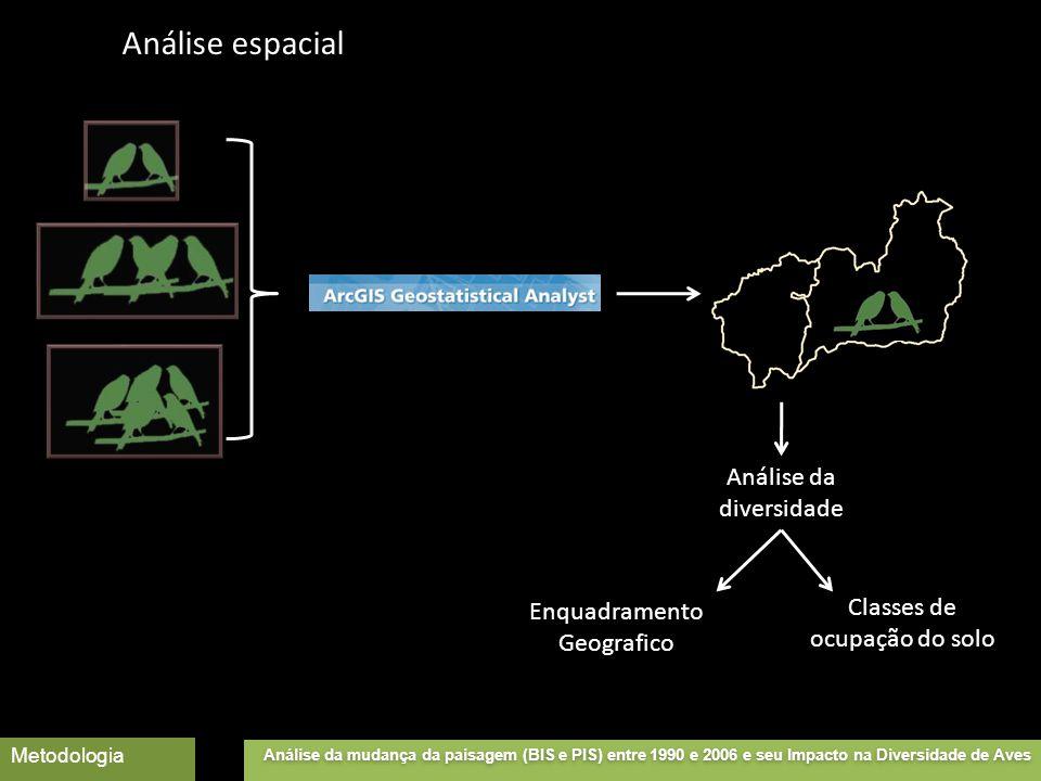 Análise da diversidade Enquadramento Geografico Classes de ocupação do solo Análise da mudança da paisagem (BIS e PIS) entre 1990 e 2006 e seu Impacto na Diversidade de Aves Metodologia Análise espacial