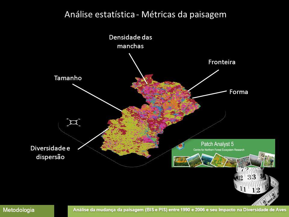 Tamanho Densidade das manchas Fronteira Forma Diversidade e dispersão Análise da mudança da paisagem (BIS e PIS) entre 1990 e 2006 e seu Impacto na Diversidade de Aves Metodologia Análise estatística - Métricas da paisagem