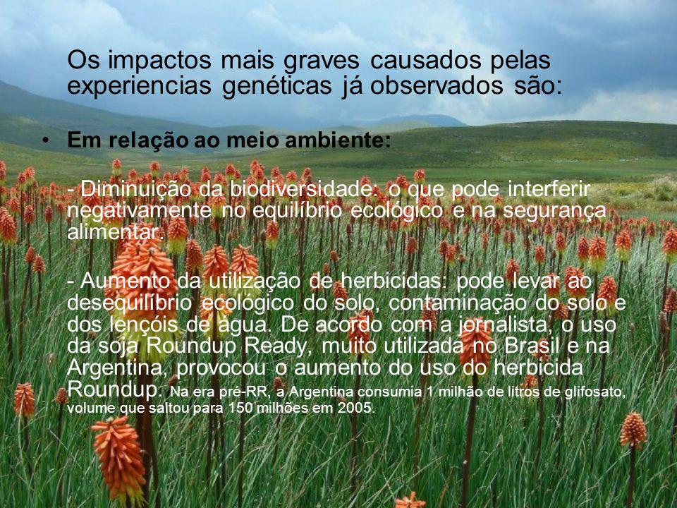 Os impactos mais graves causados pelas experiencias genéticas já observados são: Em relação ao meio ambiente: - Diminuição da biodiversidade: o que pode interferir negativamente no equilíbrio ecológico e na segurança alimentar.