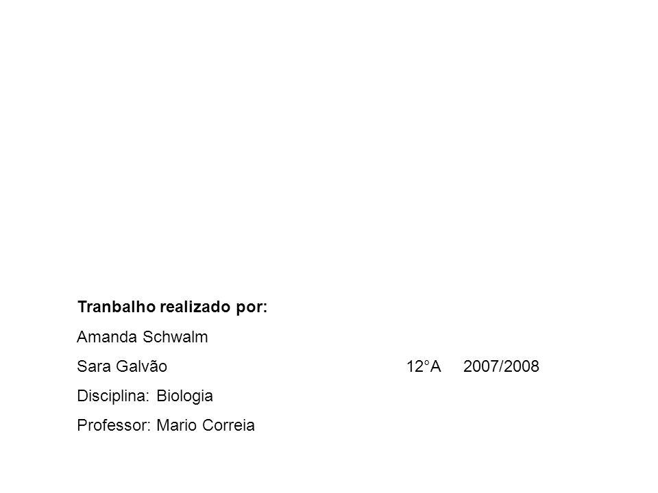 Tranbalho realizado por: Amanda Schwalm Sara Galvão 12°A 2007/2008 Disciplina: Biologia Professor: Mario Correia